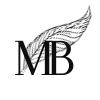 Marina Black Media
